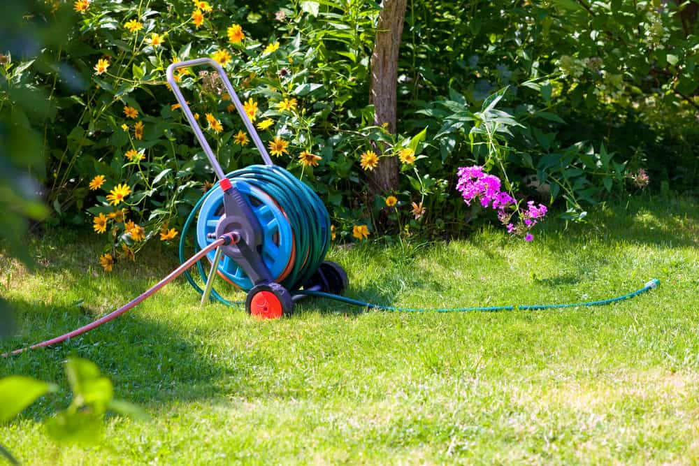Best Expandable Hose 2020 Top 5 Best Garden Hose Reel Reviews 2019 2020 – Shary Cherry