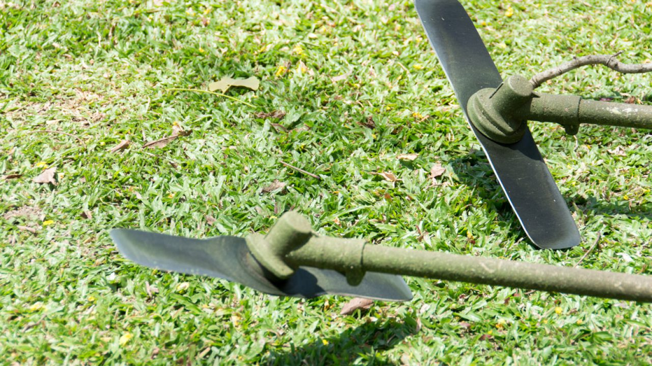 Top 5 Best Lawn Mower Blades Reviews 2019-2020 – Shary Cherry