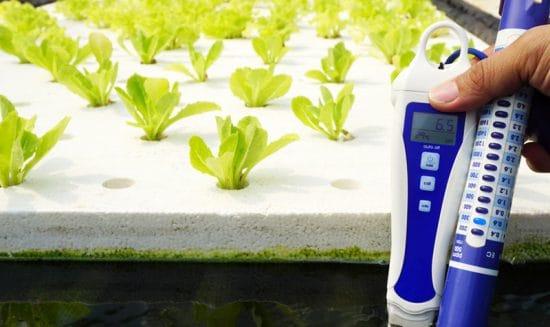 Nutrient Meter and pH meter