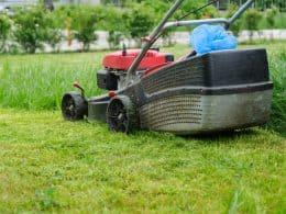 mowing green grass